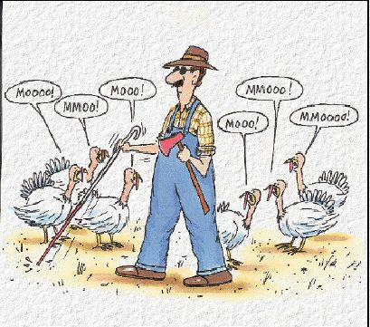 thanksgiving-joke-720535